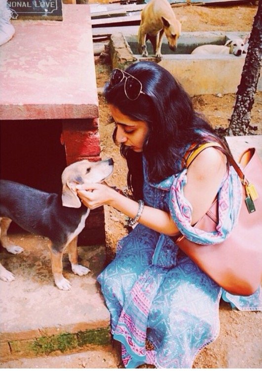 Sai Ashram Doggies 2